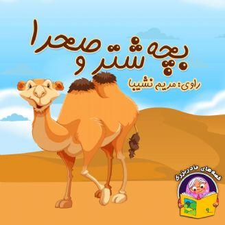 بچه شتر و صحرا