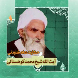 زندگینامه آیت الله شیخ محمد کوهستانی