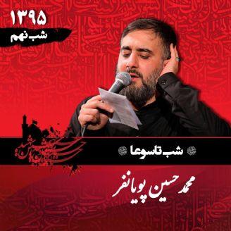 شب نهم محرم 95 - محمدحسین پویانفر - تاسوعا