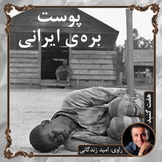 پوست بره ی ایرانی