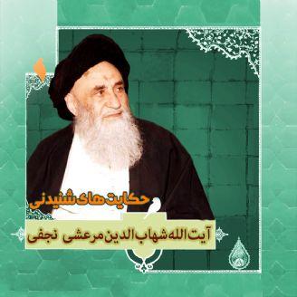 زندگینامه آیت الله العظمی شهاب الدین مرعشی نجفی