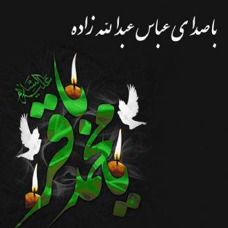 عباس عبدالله زاده