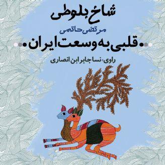 قلبی به وسعت ایران