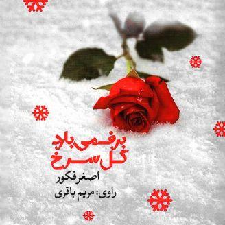برف میبارد گل سرخ