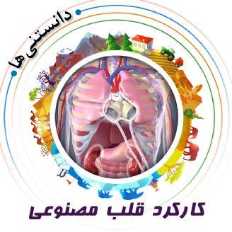 كاركرد قلب مصنوعی