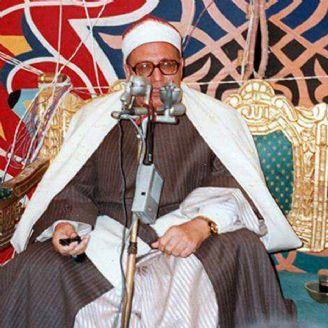 محمد احمد شبیب