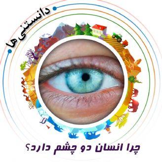 چرا انسان دو چشم دارد؟