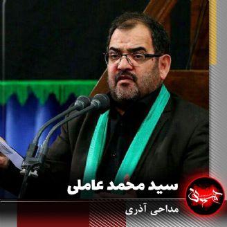 سید محمد عاملی