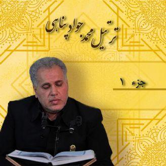 محمد جواد پناهی