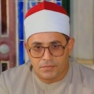 شحات محمد انور
